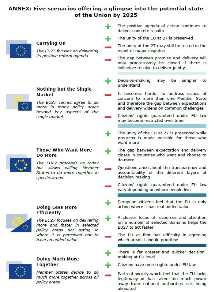 European Commission White Paper on the future of the EU