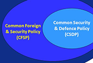 Common Security and Defence Policy and on the Common Foreign and Security Policy.