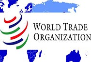 S&Ds call for fair trade with a strong development agenda ahead of Kenya WTO summit, World Trade Organisation (WTO), least developed countries (LDCs), Bernd Lange MEP, David Martin MEP, Doha Round, Global trade, climate change and sustainability, SMEs,