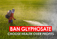 man spraying glyphosate herbicide