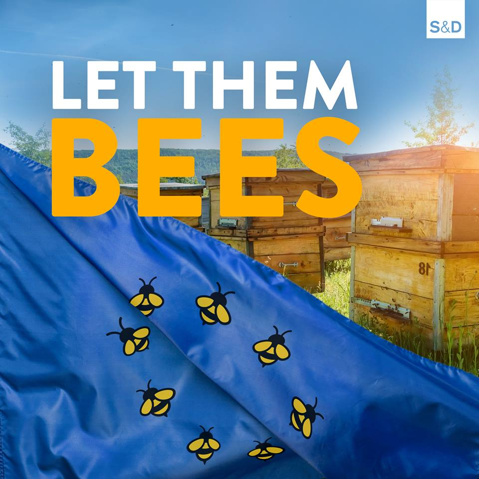 bees on an eu flag in a field