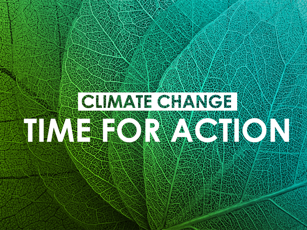 Climate change - time to act - writing on green leaves
