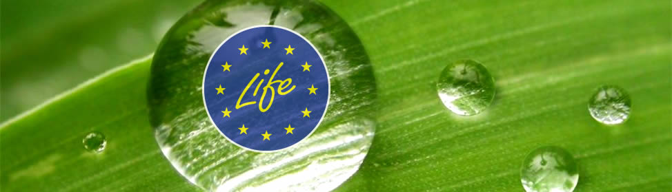 LIFE with EU stars and green background