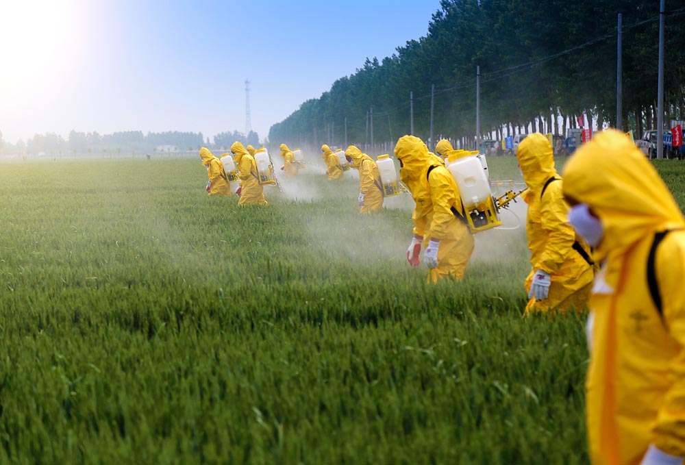 People in yellow suits spraying pesticide on crops