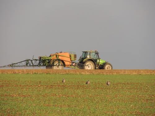 Tractor spraying field with pesticides
