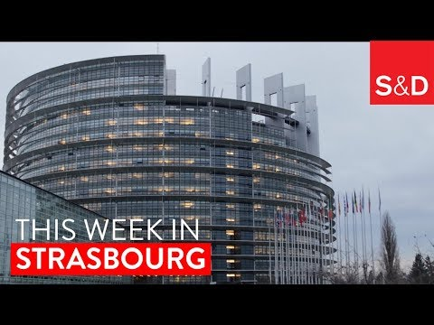 Embedded thumbnail for This Week in Strasbourg | Paradise Papers, Rule of Law, Refugees, Social Rights and more