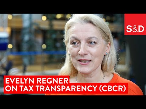 Embedded thumbnail for Evelyn Regner on Tax Transparency (Country-by-country Reporting)