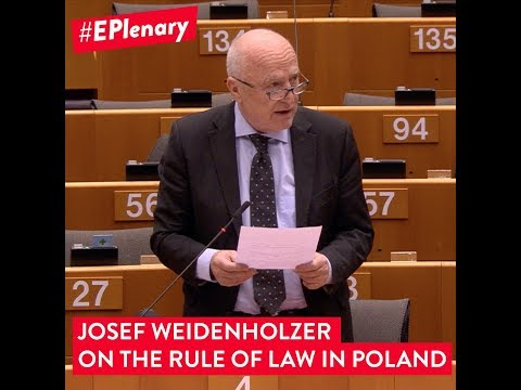 Embedded thumbnail for Josef Weidenholzer on the Rule of Law in Poland