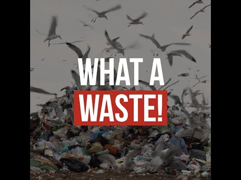 Embedded thumbnail for What a Waste! Let's Move towards a Circular Economy